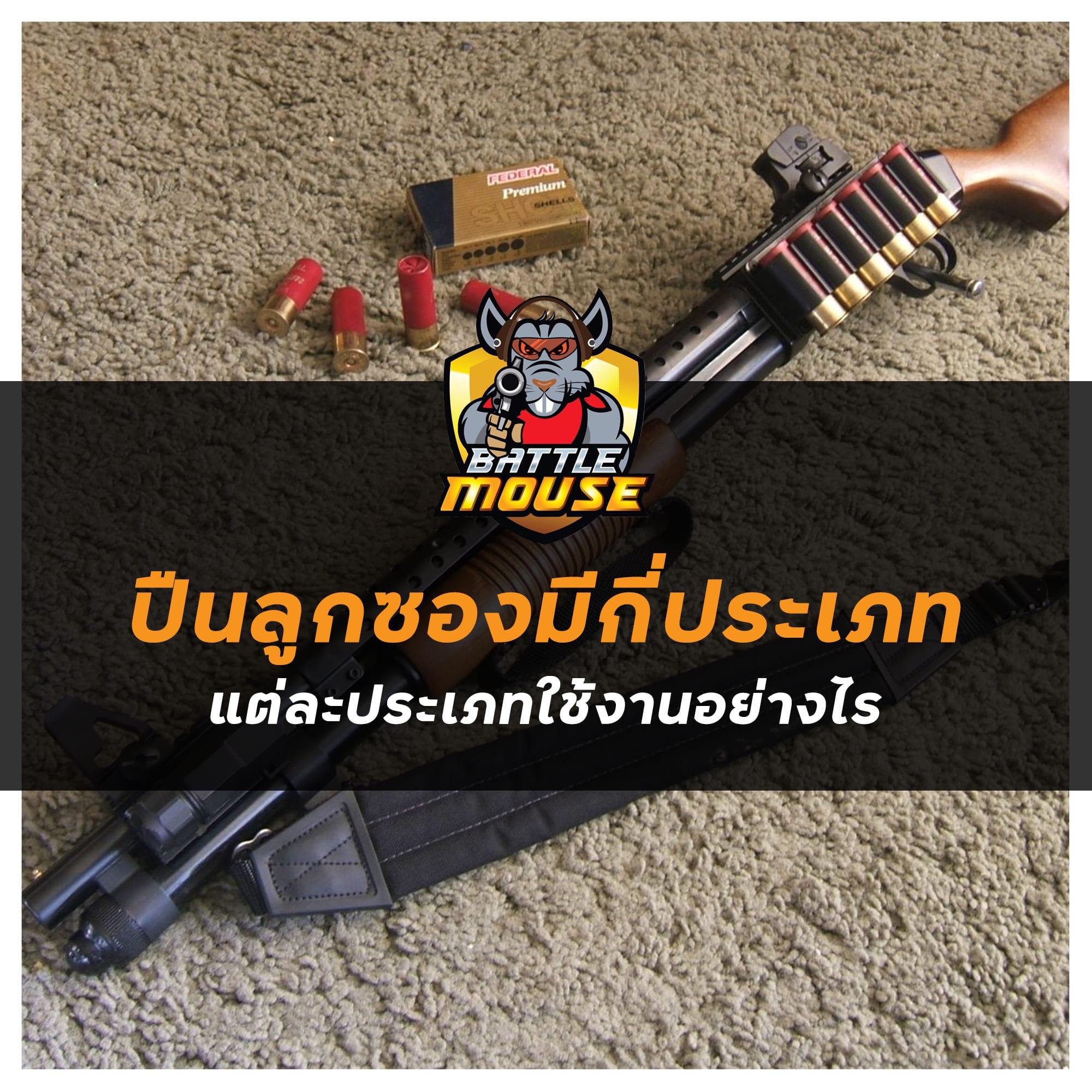 อาวุธปืน ปืนลูกซองมีกี่ประเภท แต่ละประเภทใช้งานอย่างไร